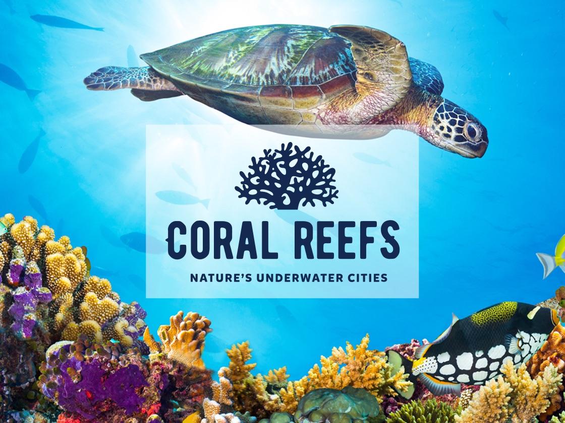 New exhibit at the Aquarium of the Pacific!