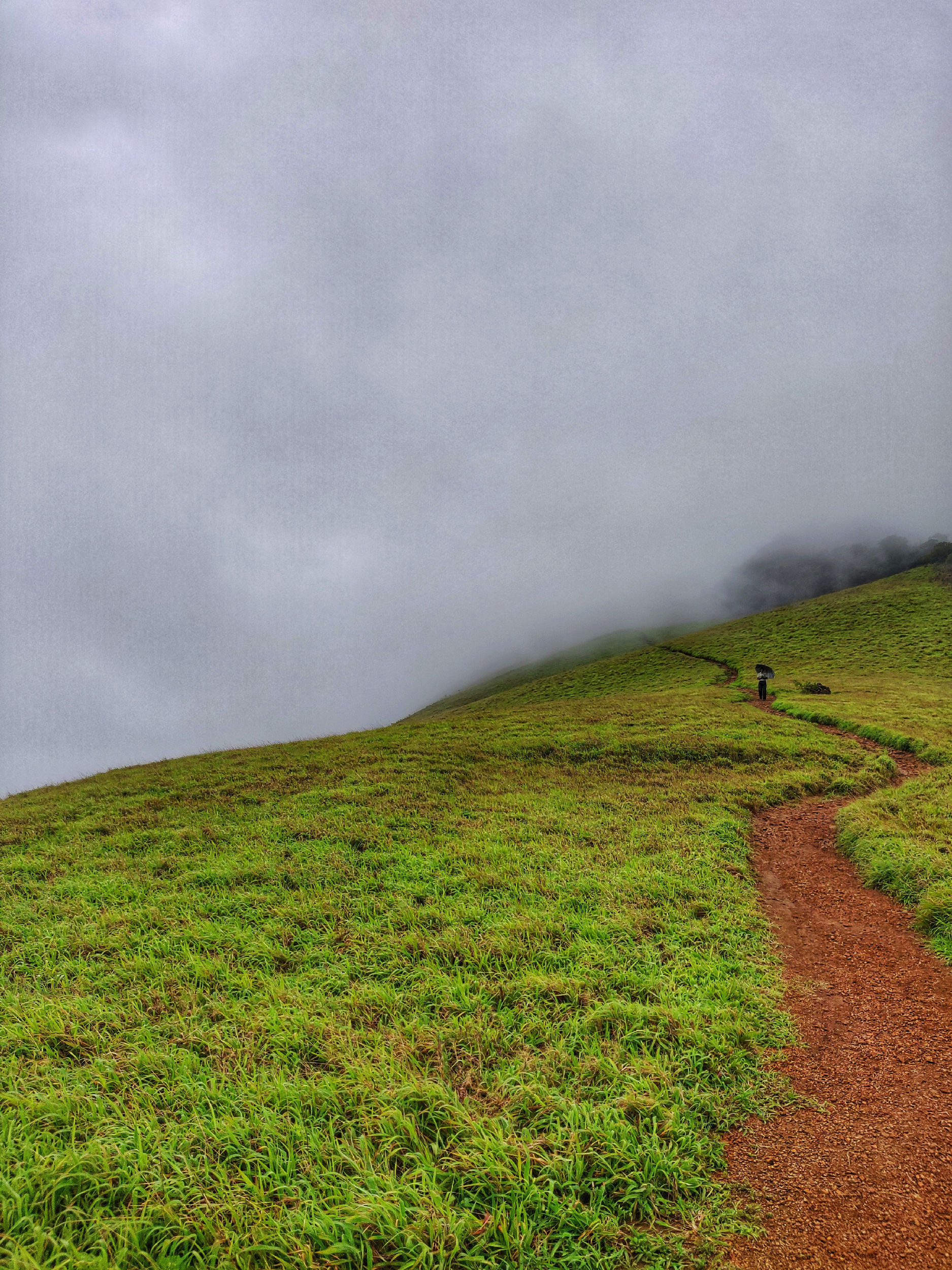 The trek.....