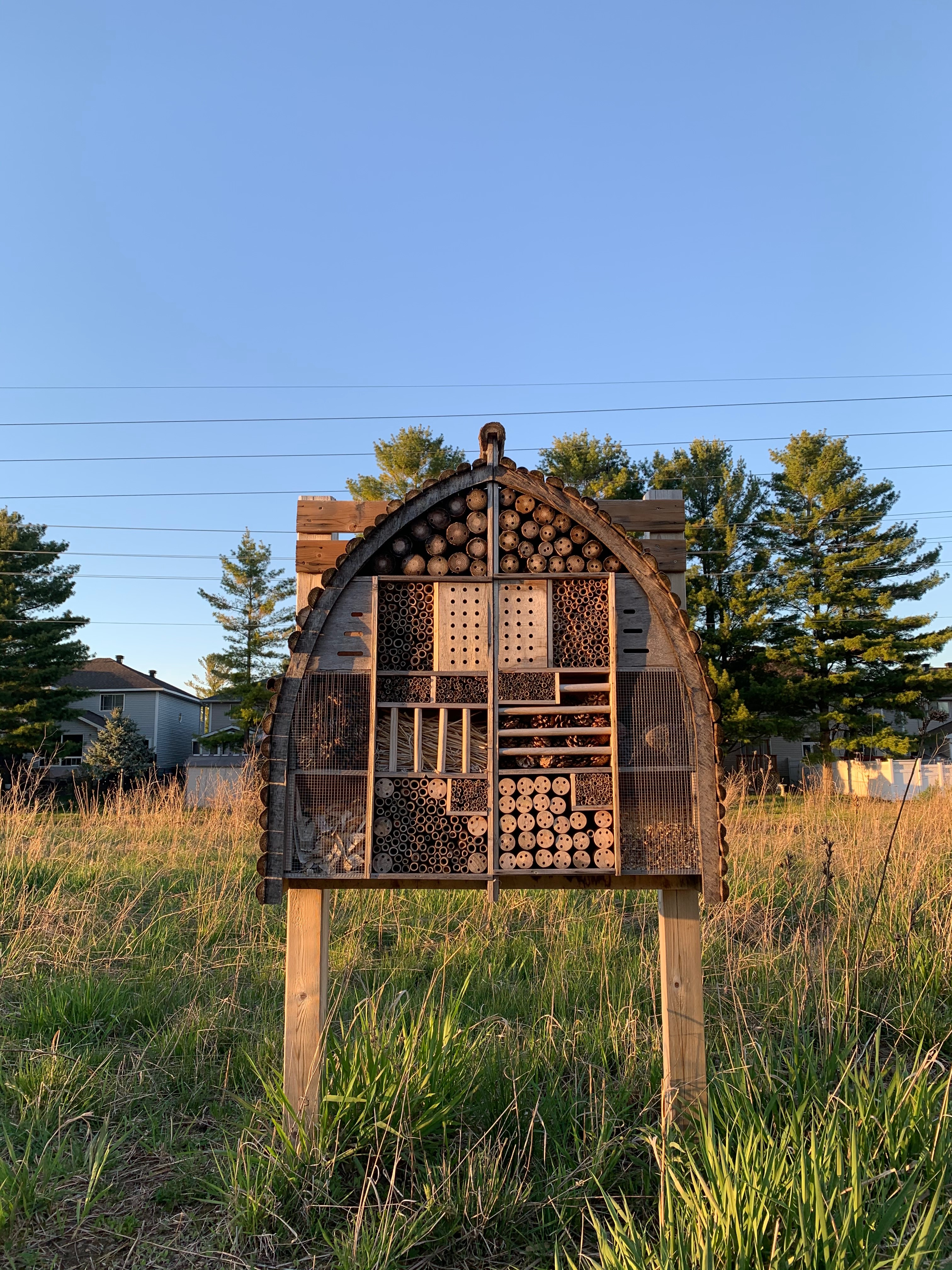 Unrelated picture of a bee hotel on a close trail