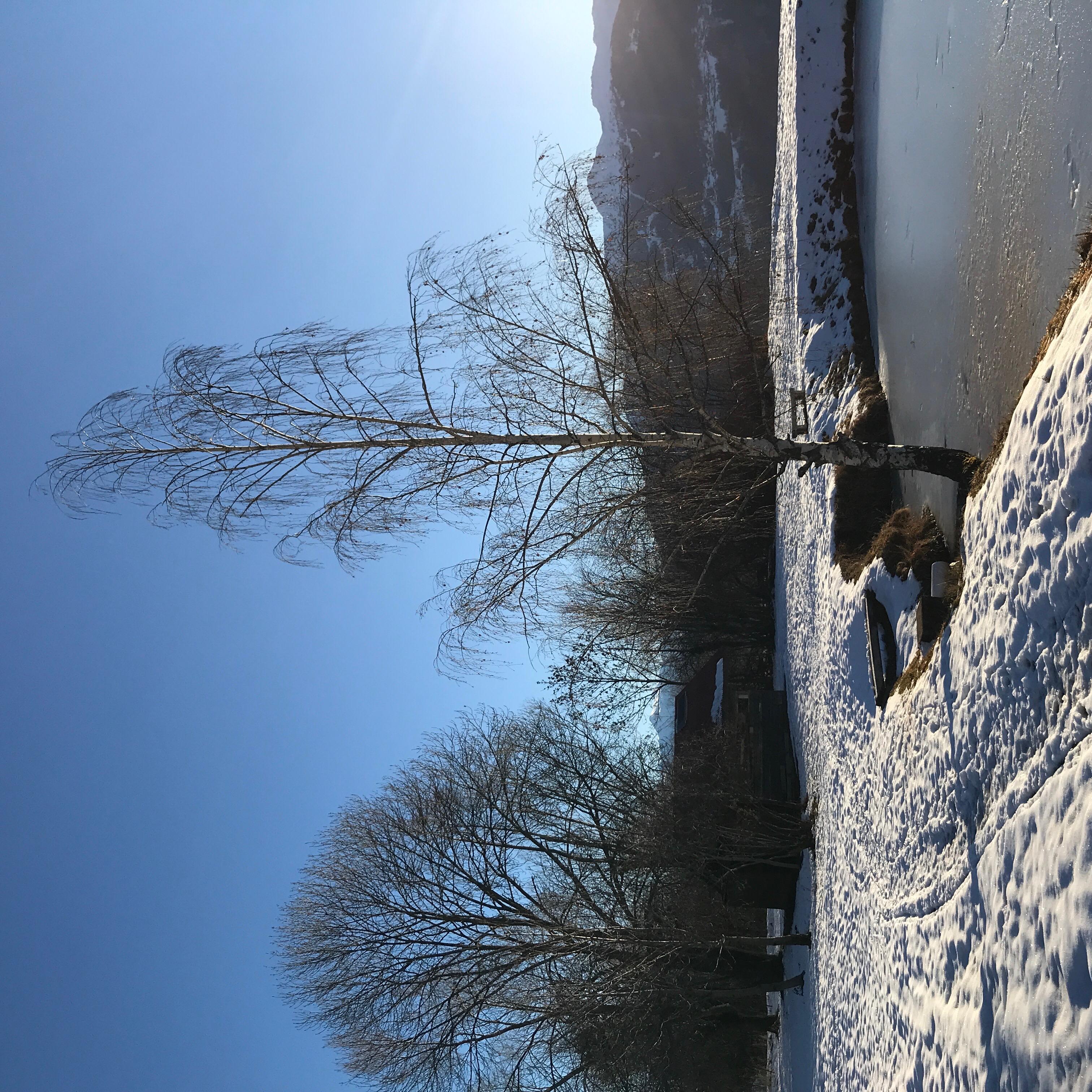 At the Etang des Rochés (The Pond of the russet..)