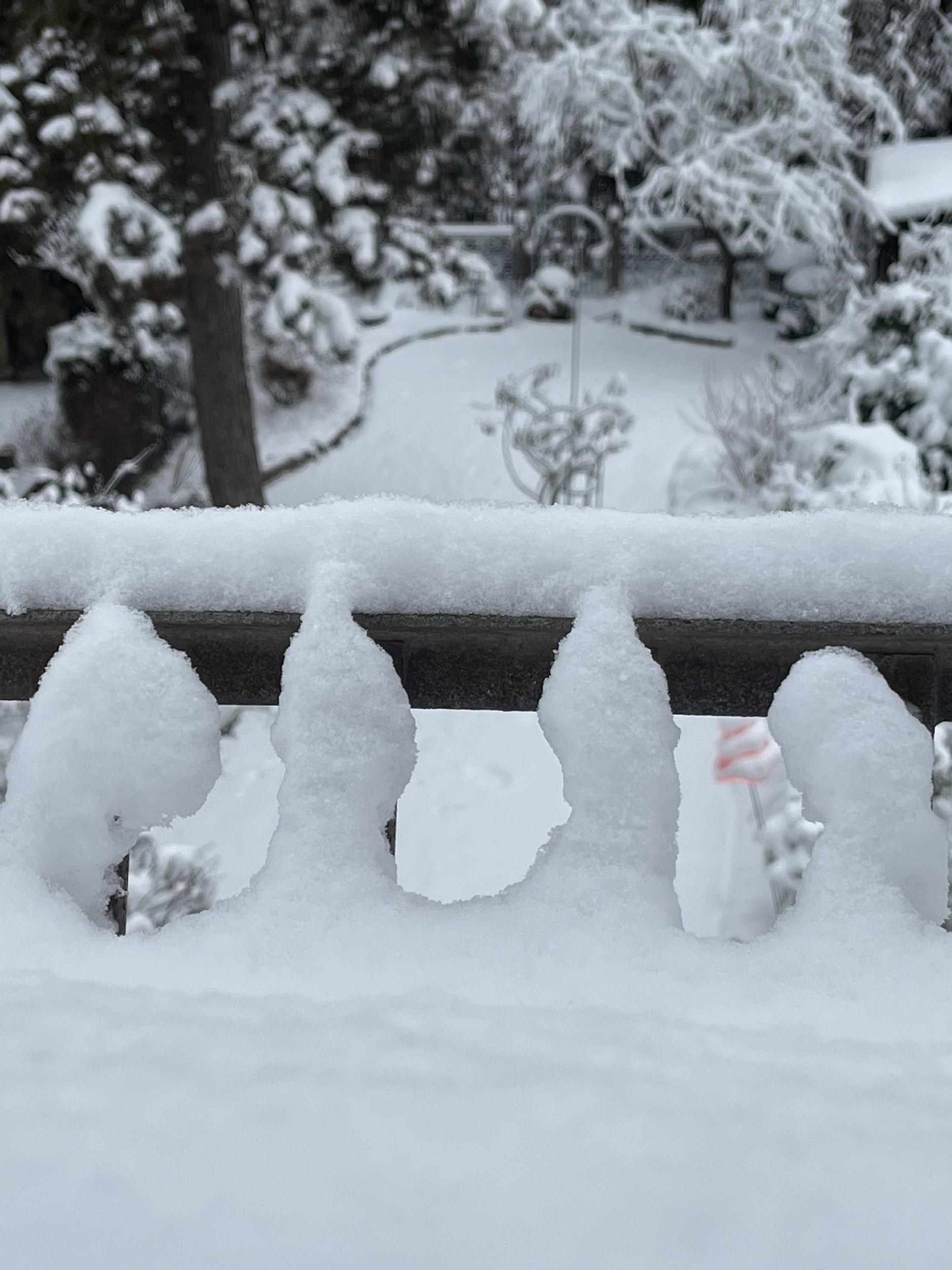 Schneetag ❄️
